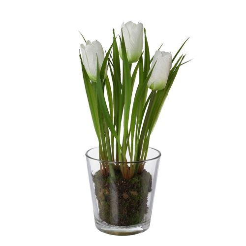 Stof tulipaner i glas