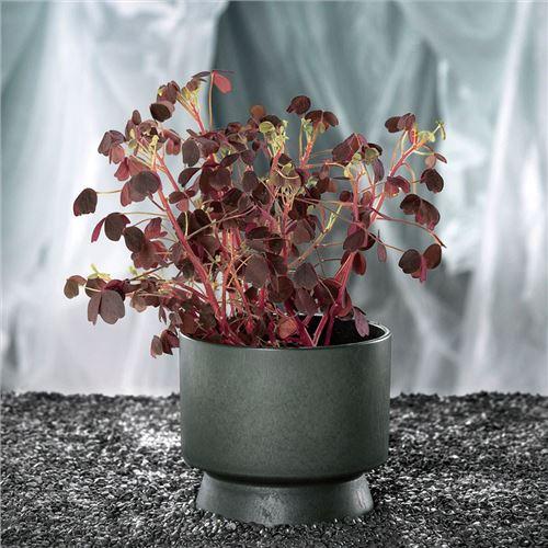 Rosendahl urtepotteskjuler, grøn. Ø12 cm. Recycled